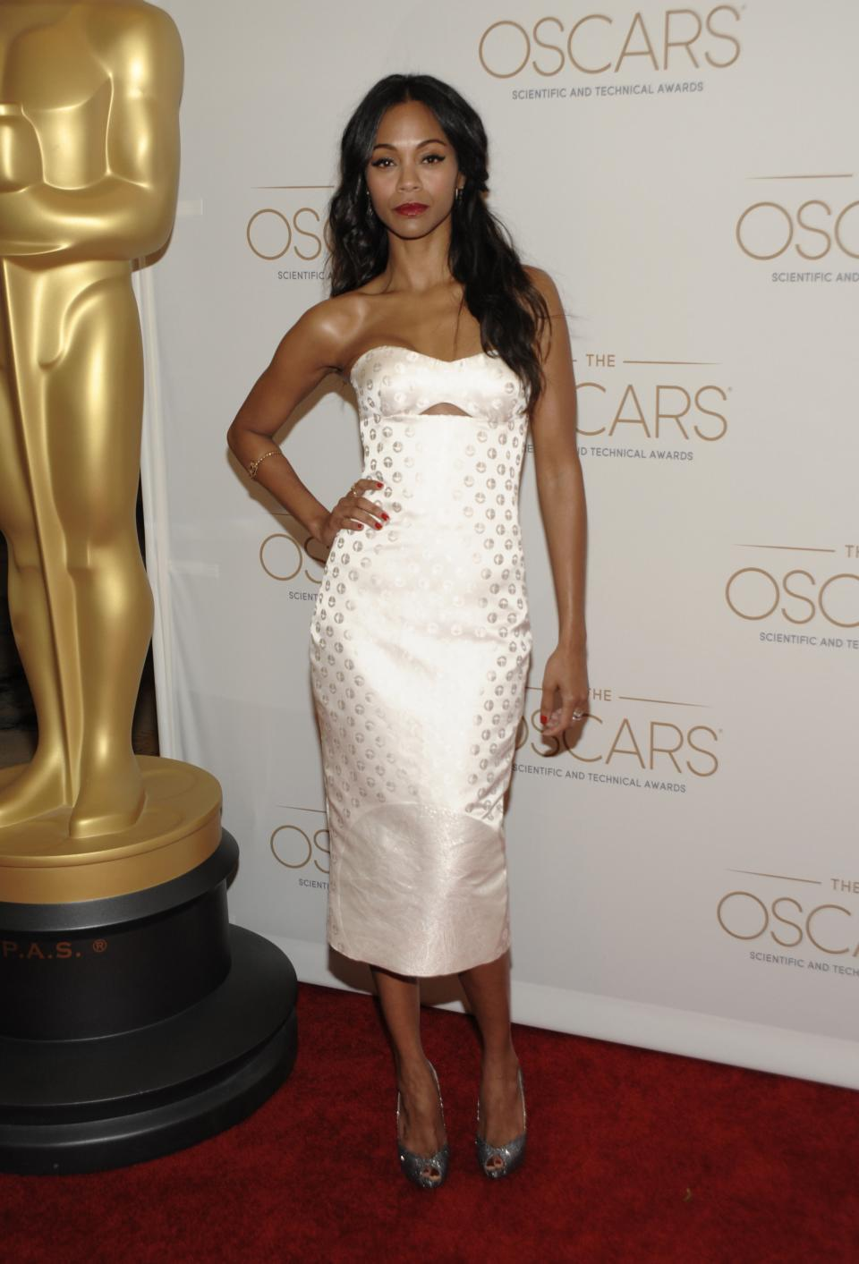 Actress and evening host Zoe Saldana arrives at The Academy of Motion Picture Arts and Sciences, Scientific and Technical Awards at The Beverly Hills Hotel in Beverly Hills, Calif. on Saturday, Feb. 9, 2013. (Photo by Dan Steinberg/Invision/AP)
