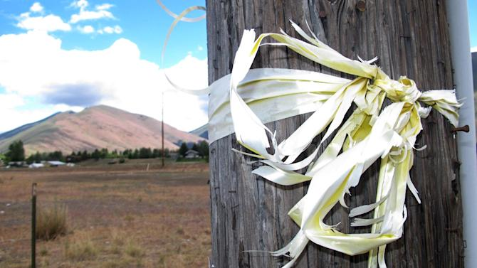 A tattered yellow ribbon honoring captive U.S. Army Sgt. Bowe Bergdahl is tied to a utility pole along Idaho State Highway 75 near Hailey, Idaho, on Thursday, June 20, 2013. The Taliban on Thursday proposed a deal in which they would free Bergdahl, a Hailey resident who has been held prisoner for four years, in exchange for five of their most senior operatives at Guantanamo Bay. (AP Photo/John Miller)