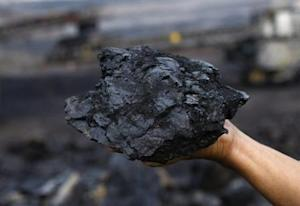 A worker of state-coal miner PT Bukit Asam shows a coal rock at the open pit mine in Tanjung Enim in South Sumatra province August 23, 2011. REUTERS/Dwi Oblo/Files