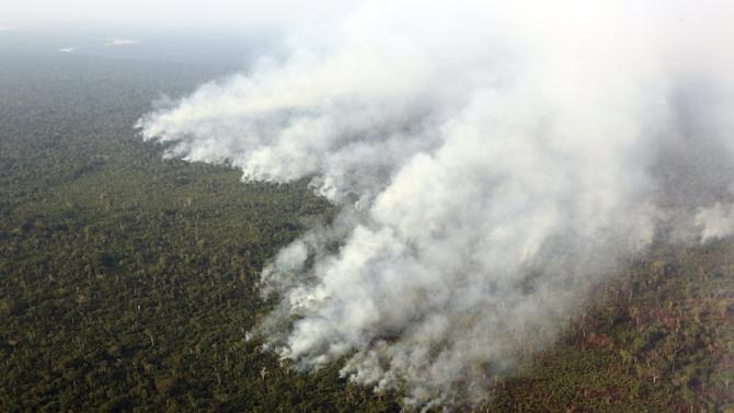 Smoke billows during a fire in an area of the Amazon rainforest at the Kuikuro territory in the Xingu National Park, Mato Grosso, Brazil