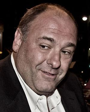 Celebrities Mourn 'The Sopranos' Star James Gandolfini, Dead at 51