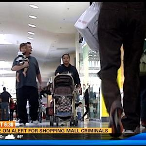 Police on alert for shopping mall criminals
