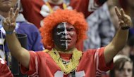 A fan of the San Francisco 49ers cheers against the Baltimore Ravens during Super Bowl XLVII on February 3, 2013 in New Orleans, Louisiana