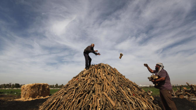 In this Monday, Feb. 25, 2013 photo, Palestinian workers collect wood to be burned and turned into coal at one of the few local charcoal manufacturing shops, east of Gaza City. In adapting to years of border blockades and shortages, Gazans have become experts at recycling and making new out of old, including turning scrap wood into charcoal to be used for barbecue grills and water pipes in local restaurants and coffee houses. (AP Photo/Hatem Moussa)