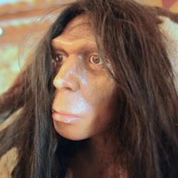 New Study Argues Neanderthals May Have Cooked With Yummy Herbs