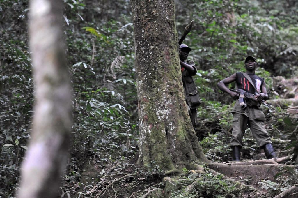 Seven Rwandan Hutu rebels killed in DR Congo fighting