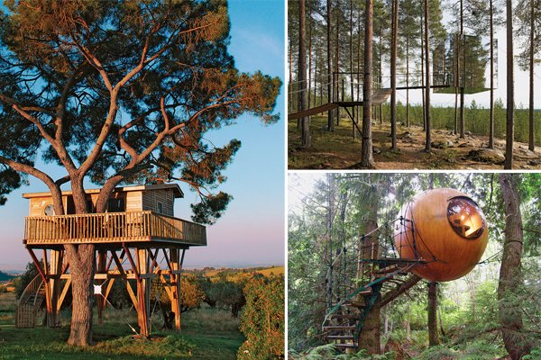 Tree house hotels: 6 of the …
