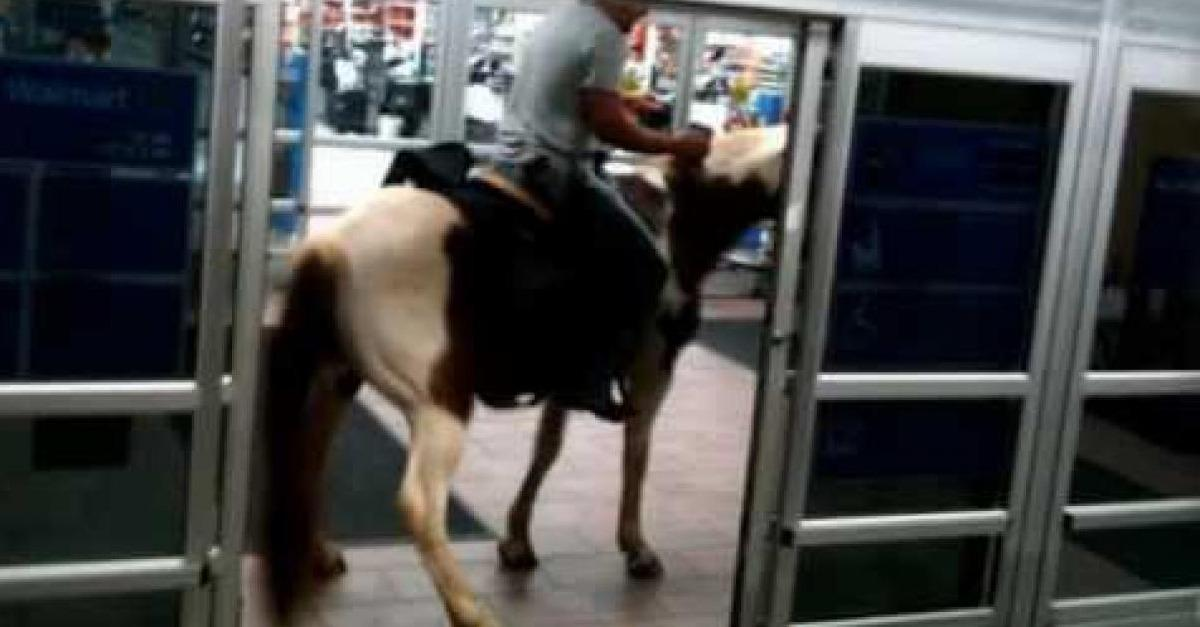 20 Most Ridiculous Things You Will See at Walmart