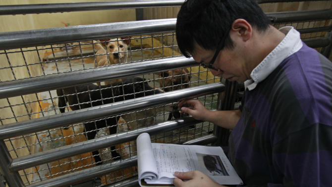 In this photo taken on Monday, April 9, 2012, Taiwanese photographer Tou Chih-kang identifies dogs on a manifest that are to be killed later that day at a government-run shelter in Taoyuan, northern Taiwan. In an ongoing project, photographer Tou makes portraits of shelter dogs in the final moments before they are put down by lethal injection. Tou has been visiting dog shelters for two years now, making human-like portraits that give a sense of dignity and esteem to some 400 canines, in hopes of educating the public on the proper care of pets. This year Taiwanese authorities will kill an estimated 80,000 stray dogs at 38 pounds scattered throughout the island. (AP Photo/Wally Santana)