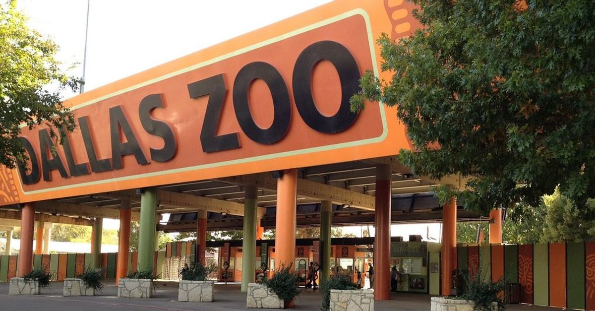 Top 10 Best Zoos in the Country