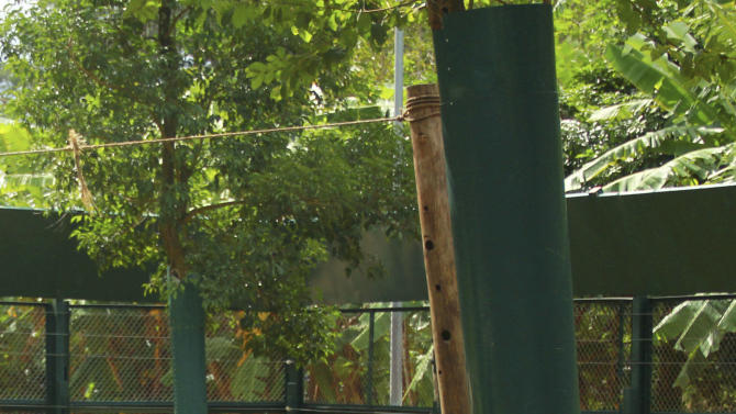 In this photo taken Oct. 29, 2012, bears sit inside an enclosure at the Vietnam Bear Rescue Center in Tam Dao, Vietnam. The bears, some of them blinded or maimed, play behind tall green fences like children at school recess. Rescued from Asia's bear bile trade, they were brought to live in this lush national park, but now they may need saving once more. The future of the $2 million center is in doubt after Vietnam's vice defense minister in July ordered it not to expand further and to find another location, saying the valley is of strategic military interest. Critics allege the park director is urging an eviction because he has a financial stake in a proposed ecotourism venture on park property - accusations he rejects. (AP Photo/Mike Ives)