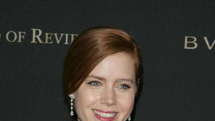 National Board of Review of Motion Pictures Awards Gala New York 2009 Amy Adams