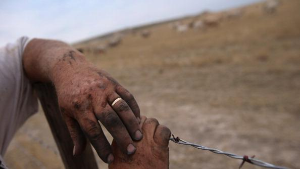 Darren Becker, his hands black from a day of farm work, looks over his cattle field on August 24, 2012 in Logan, Kansas. Like many Kansas farmers who's profits have been wiped out by the record drought, Becker is working hard to hang on to his farm, which has been in their family for five generations. Most of Kansas is still in extreme or exceptional drought, despite recent lower temperatures and thunderstorms, according to the University of Nebraska's Drought Monitor. The record-breaking drought, which has affected more than half of the continental United States, is expected to drive up food prices by 2013 due to lower crop harvests and the adverse effect on the nation's cattle industry. (Photo by John Moore/Getty Images)