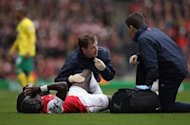 Arsenal defender Sagna blames Norwich's Johnson for his broken leg
