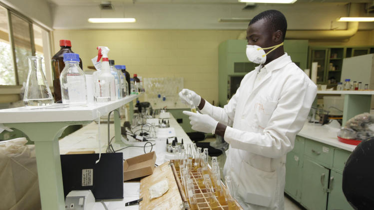 In this photo taken Tuesday, Oct. 2, 2012. A man work inside a Laboratory on cassava at the International Institutes For Tropical Agriculture in Ibadan, Nigeria. From this field nestled among the lush rolling hills of Nigeria's southwest, the small plants rising out the hard red dirt appear fragile, easily crushed by weather or chance. Looks, however, are deceiving. These cassava plants will grow into a dense thicket of hard, bamboo-like shoots within a year, with roots so massive a single planted hectare can provide three tons of food. The plants survive fires, droughts and pestilence, while offering a vital food source for more than 500 million people living across sub-Saharan Africa. (AP Photo/Sunday Alamba)