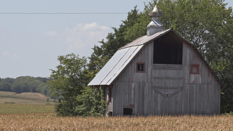 A field of dried corn surrounds a barn near Nebraska City, Neb., Thursday, July 26, 2012. The widest drought to grip the United States in decades is getting worse with no signs of abating. The drought covering two-thirds of the continental U.S. had been considered relatively shallow, the product of months without rain, rather than years, but a report released Thursday showed its intensity is rapidly increasing, with 20 percent of the nation now in the two worst stages of drought, up 7 percent from last week. (AP Photo/Nati Harnik)