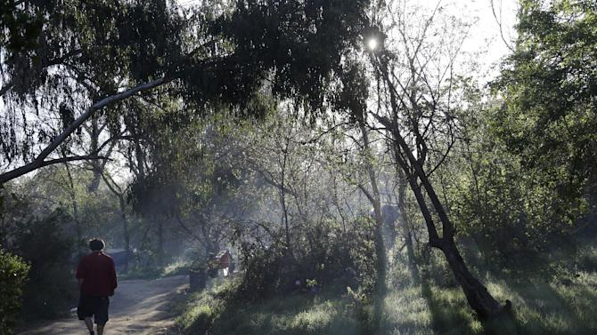 In this March 18, 2014 photo, man walks along a pathway in the early morning in the Jungle, a homeless encampment in San Jose, Calif. The Jungle is home at times to as many as 350 residents, almost all San Jose locals, and is believed to be the largest homeless encampment in the U.S. (AP Photo/Marcio Jose Sanchez)