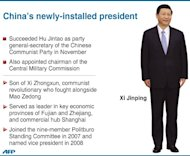 Graphic profile of China's newly-installed president, Xi Jinping