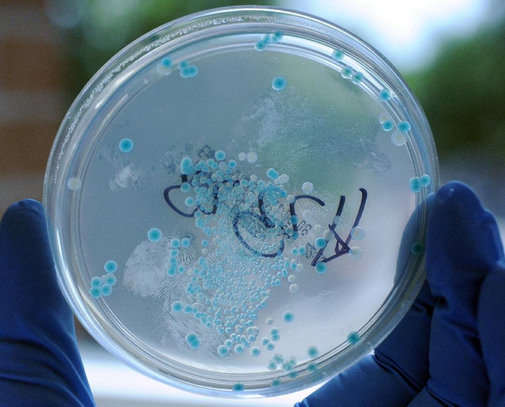 Obama to seek more funds for antibiotic-resistant bacteria fight