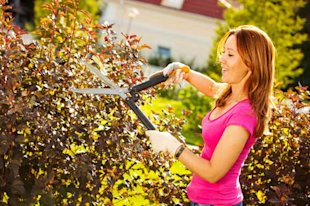 Consider Doing Yard Work for a Neighbor for Extra Cash
