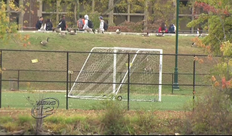 New Rochelle High was the host for a violent attack during a soccer game — News 12 screenshot