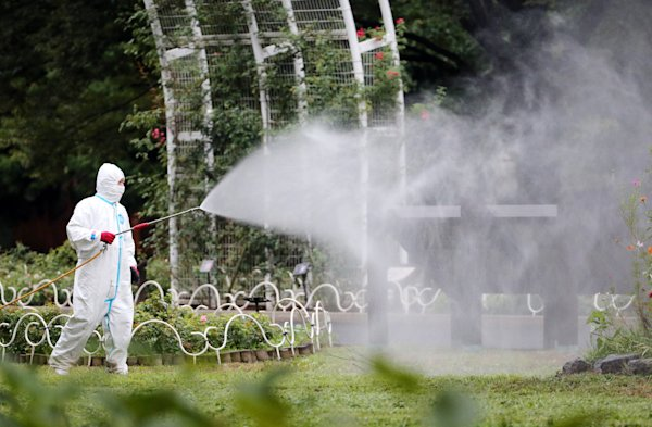 Japan confirms more dengue infections: officials