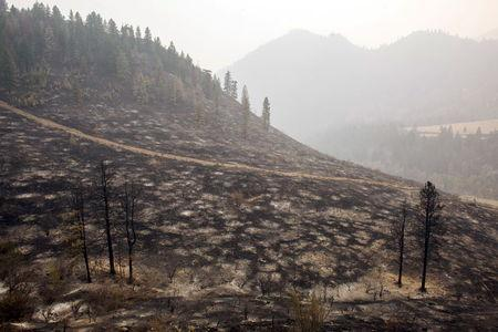 Largest wildfire in Washington state history claims 176 homes