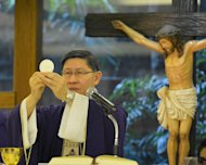 The Archbishop of Manila, Cardinal Luis Antonio Tagle, celebrates mass at a church in Manila, on February 13, 2013. Bishops and all Catholics in the Philippines are hoping that Tagle will be the next pope, a senior church figure said on February 12, as he promoted the credentials of the country&#39;s only candidate