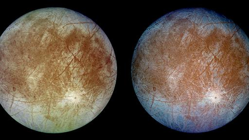 Where to Look for Life on Jupiter's Moon Europa