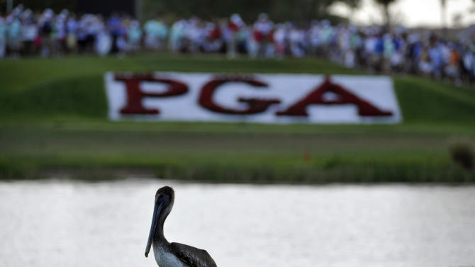 A pelican stands on the 17th green during the third round of the Honda Classic golf tournament in Palm Beach Gardens, Fla., Saturday, March 3, 2012.  (AP Photo/Rainier Ehrhardt)