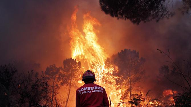 A Portuguese firefighter works to extinguish a wildfire near Caramulo, north Portugal, Thursday, Aug. 29, 2013. Portuguese officials said a woman firefighter died in a forest blaze, becoming the fifth fatality among emergency crews in a month as summer wildfires scorch large areas of parched countryside. (AP Photo/Francisco Seco)