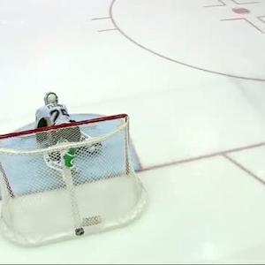 Fleury robs Frans Nielsen on a penalty shot