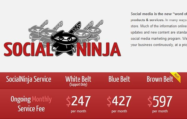 "A typical ""social media ninja"" website"