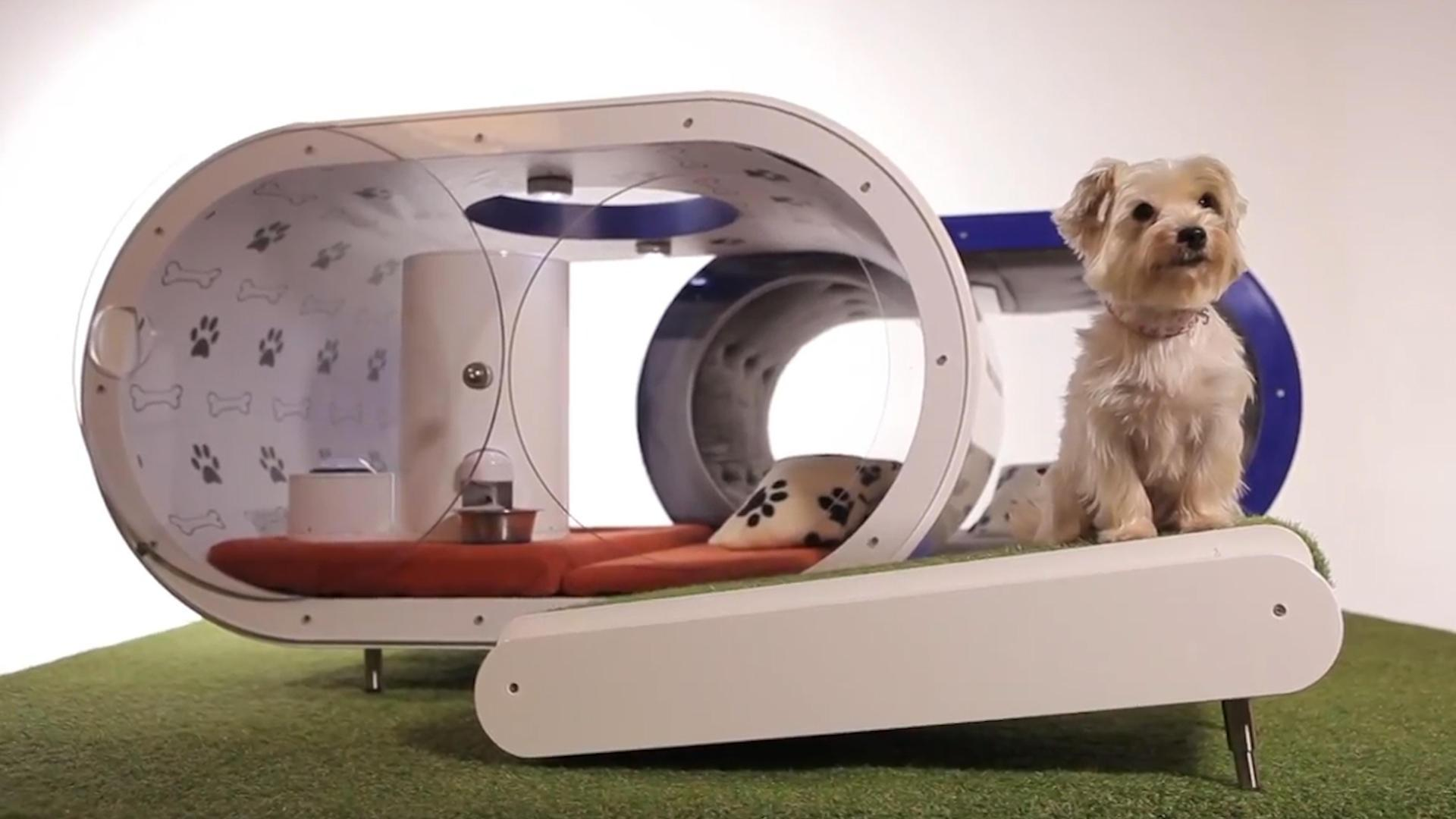 Tomorrow Daily 140: Google's Atari AI, a futuristic doghouse for £20,000 and more