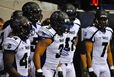 Arena Football League Playoffs Schedule Set:  Fan Take