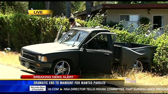 Dramatic end to manhunt for wanted parolee