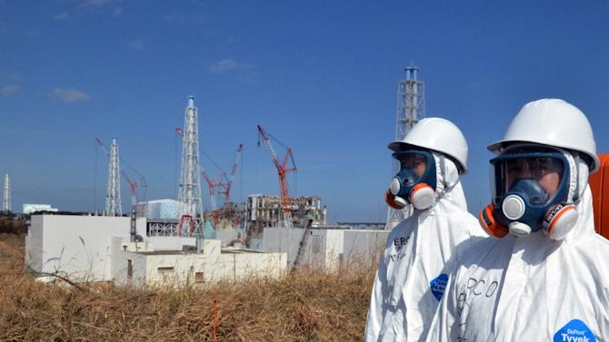 Four years after the Fukushima nuclear disaster, the plant is still extracting some 300 tonnes of contaminated water from the ground every day