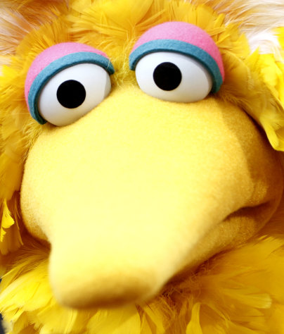 "FILE - Big Bird, of the children's television show Sesame Street, arrives at the Daytime Emmy Awards on in this Aug. 30, 2009 file photo, in Los Angeles. In a week when Big Bird was in the news, it seemed fitting to find him perched at the parody news report Saturday Oct. 6, 2012 on NBC's ""Saturday Night Live."" (AP Photo/Matt Sayles, File)"