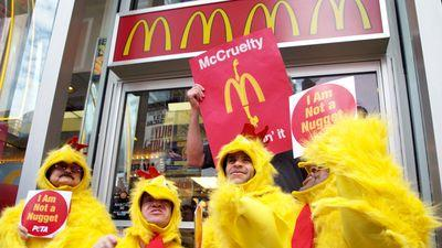 McDonald's Drops Chicken Supplier Over Animal Torture Footage
