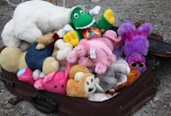 When packing for your pet, one or two toys should be plenty.