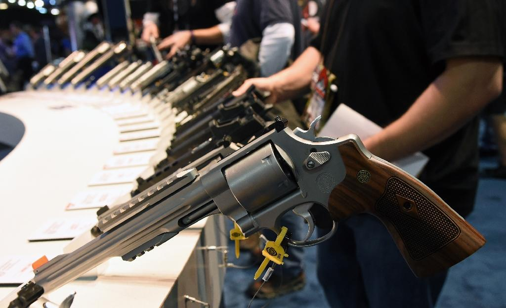 Firearms seized in record numbers at US airports in 2015: official