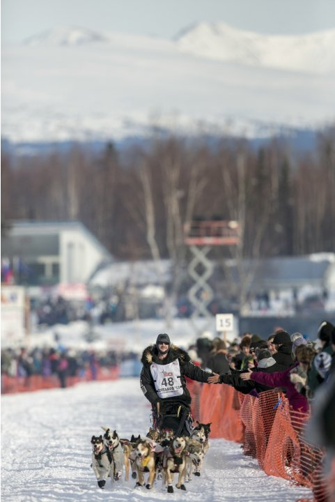 Moore races down the trail at the re-start of the Iditarod dog sled race in Willow