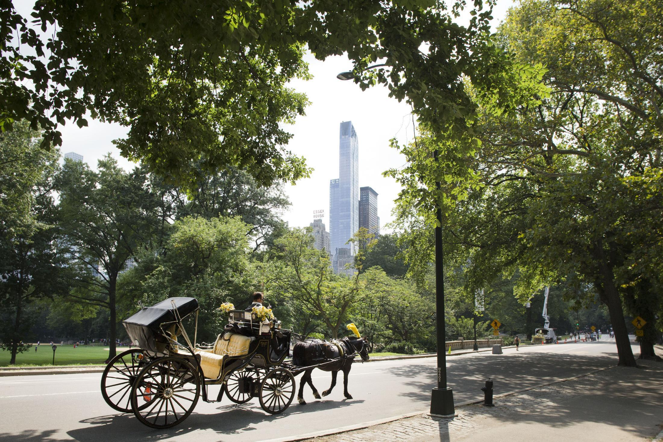 Pope adds Central Park to list of New York City stops