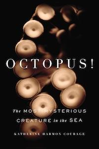 Happy Octopus Day! The 8 Best Octopus Discoveries