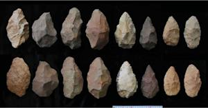 Did Rise of Ancient Human Ancestor Lead to New Stone Tools?