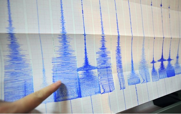 A man points at a seismic chart at the Central Weather Bureau in Taipei on March 4, 2010