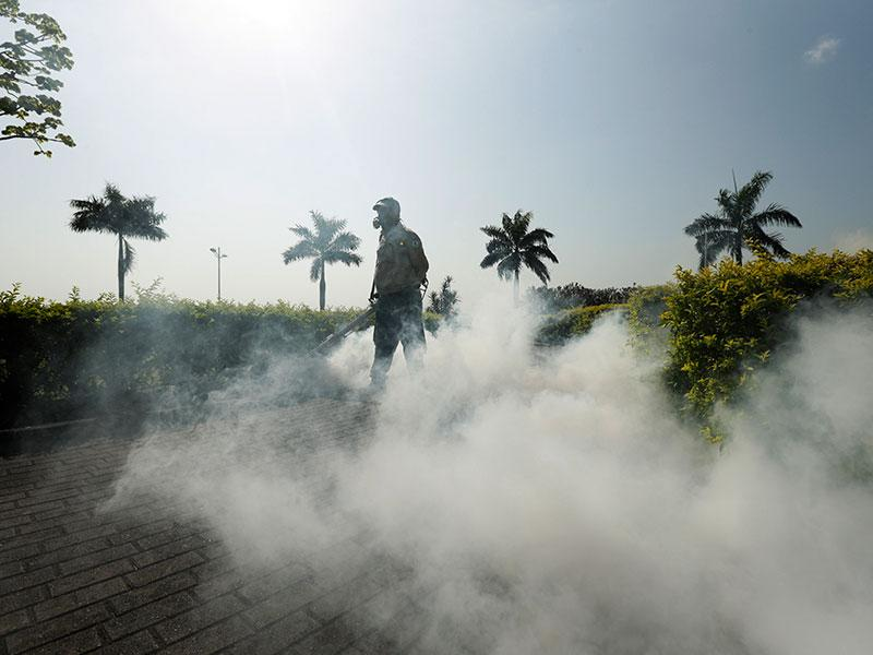 U.S. Olympic Committee Hires Infectious Disease Specialists to Advise on Zika Virus