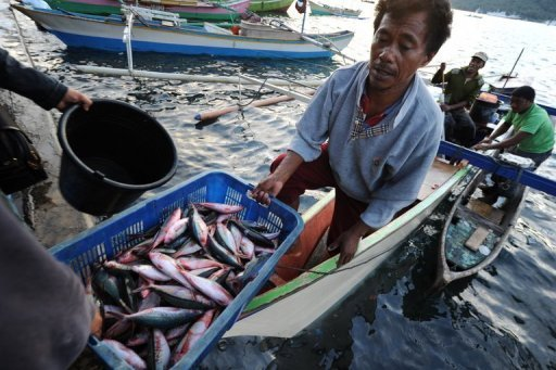 Fisherman unload at a port in Indonesia's Sulawesi province in 2011. A powerful 6.3-magnitude quake shook Indonesia's central Sulawesi province on Saturday, the US Geological Survey said, sending terrified residents fleeing into the streets