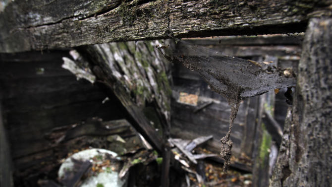 """In this Nov. 30, 2012 photo, the interior of recently collapsed old watermill located on the Rogacica river which was believed to have been Sava Savanovic's home, in the village of Zarozje, near the Serbian town of Bajina Basta. Get your garlic, wooden crosses and stakes ready: a bloodsucking vampire is on the loose.  Or so say villagers in the tiny western Serbian hamlet of Zarozje, nestled between the lush green mountain slopes and spooky thick forests. Rumors that a legendary vampire ghost has returned are spreading panic throughout the town. An official warning telling villagers to put garlic in their pockets and place wooden crosses in each of their rooms, the tools that should keep away the vampires  did nothing but fuel the fear. """"The story of Sava Savanovic is a legend, but strange things did occur in these parts back in the old days,"""" said 55-year-old housewife Milka Prokic, holding a string of onions in one hand and a large wooden stake in another.  The story goes that back in the old days, vampires would roam around and show themselves in different forms, as a butterfly, or as a hay stack, they would change form,"""" she said as mist settled on the pristine valley and the full moon appeared in the sky. (AP Photo/Darko Vojinovic)"""