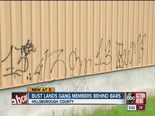 Bust lands gang members behind bars
